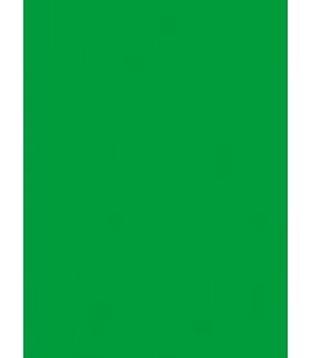 株式会社ILC【広島の児童発達支援サービス、放課後等デイサービス】